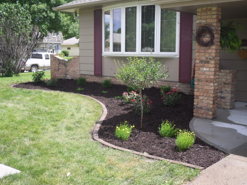 mulch bed with plant installation